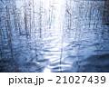 湖面に反射する光 21027439