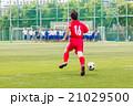 高校サッカー 21029500