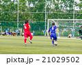 高校サッカー 21029502
