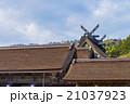 出雲大社 神社仏閣 神社の写真 21037923
