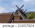 出雲大社 神社仏閣 神社の写真 21037924