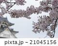 岸和田城 21045156