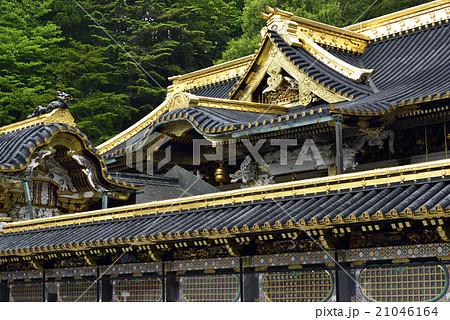 日光東照宮・御本社拝殿 21046164