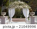 アーチ 挙式 ガーデンの写真 21049996