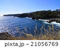 風景 海 城ヶ崎海岸の写真 21056769