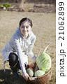 秋野菜 収穫 21062899