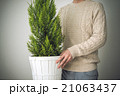 観葉植物 21063437