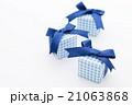 プレゼント 21063868