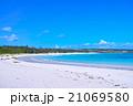 真夏の伊良部島 渡口の浜(無人) 21069580
