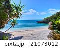 南国宮古島 アダンの木とプライベートビーチ 21073012