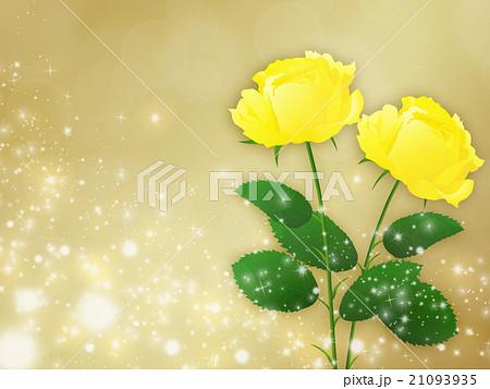 薔薇 21093935
