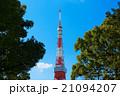 東京タワー タワー 青空の写真 21094207