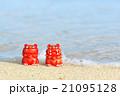 沖縄の海とシーサ 21095128