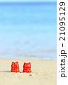 沖縄の海とシーサ 21095129