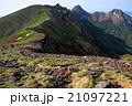 山 夏山 登山道の写真 21097221