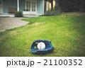 野球ボール 21100352