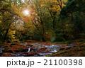 菊池渓谷 渓谷 清流の写真 21100398