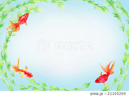 イラスト 金魚 背景 21103204