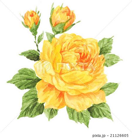 rose.ye16314pix1 21126605
