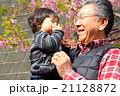 祖父と孫 21128872