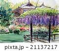春日大社の藤のスケッチ 21137217