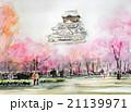 大阪城と桜のスケッチ 21139971