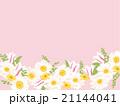 春の花 21144041