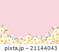 春の花 21144043