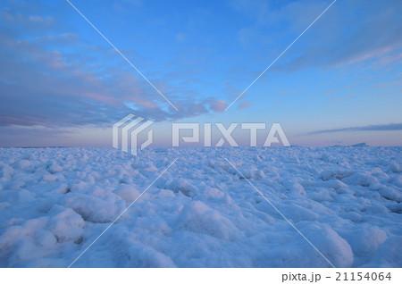 流氷 21154064