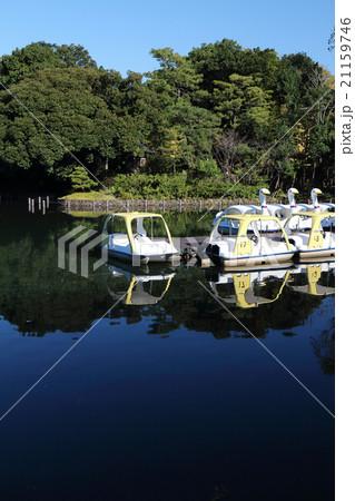 池の上のボート 21159746