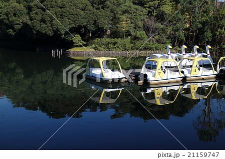 池の上のボート 21159747