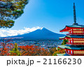 紅葉 五重塔 富士山の写真 21166230