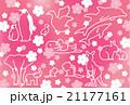 動物と桜 21177161