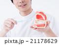 歯イメージ 21178629