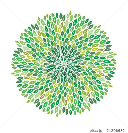 Vector floral green mandalaのイラスト素材 [21208682] - PIXTA