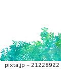 背景 ウォーターカラー 水彩のイラスト 21228922
