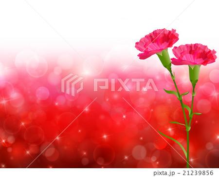 母の日 カーネーション 花 背景  21239856