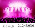 ライブ会場_サイリウム 21243939