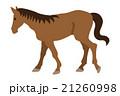 馬 歩く 動物のイラスト 21260998