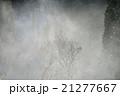 雪女の吐息 21277667