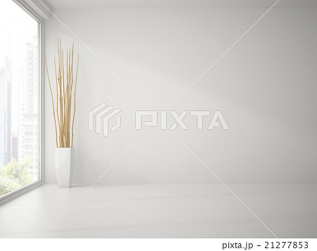 Empty Clean White Room With Branches Decor 3D