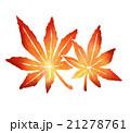 紅葉のイラスト 21278761