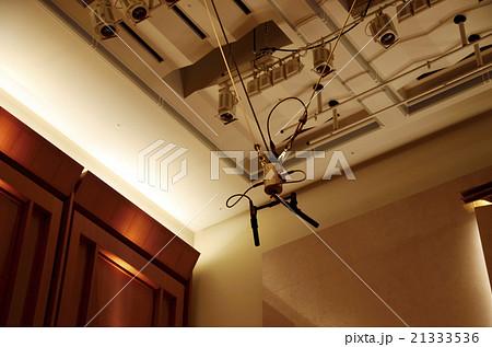 コンサートホールの吊りマイク 21333536