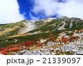 立山 紅葉 山の写真 21339097