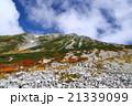 立山 紅葉 山の写真 21339099