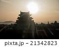 逆光を浴びて浮かび上がる名古屋城のシルエット 21342823