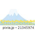 富士山と菜の花 21345974