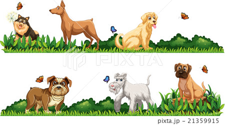 Different kind of dogs in the gardenのイラスト素材 [21359915] - PIXTA