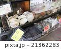 海鮮市場(小樽) 21362283