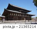 東寺 寺 教王護国寺の写真 21365214